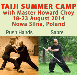 Taiji Camp with Howard Choy - August 2014, Poland