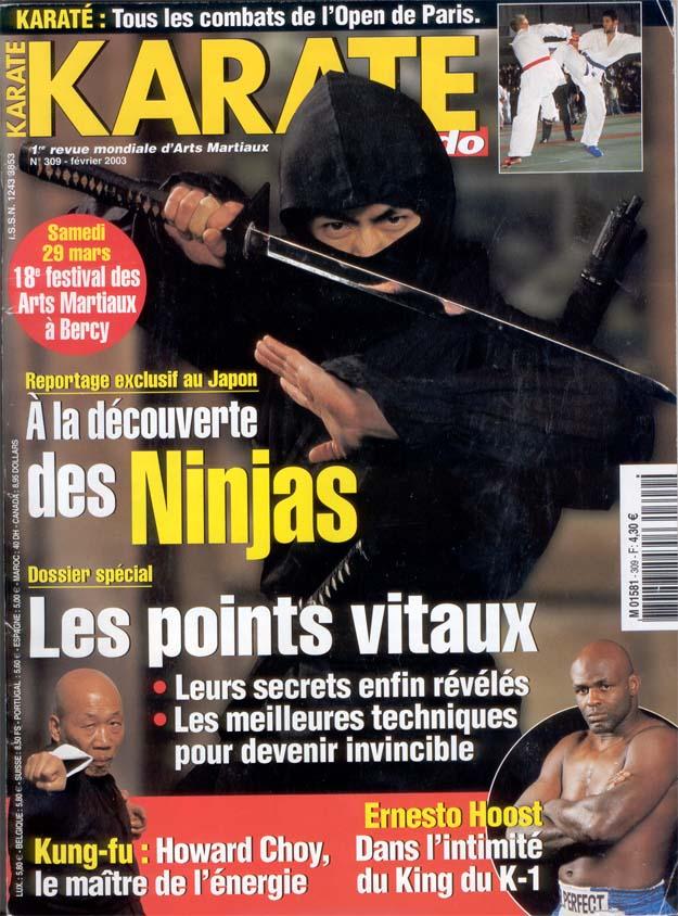 Favori Karate, Howard Choy, martial arts magazine, Fa jin. PR65